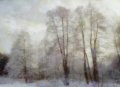 Winter Softness Art Print by Gun Legler