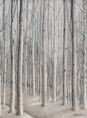 Snow Scene Landscape Drawing - Winter Solitude by Joyce Blank