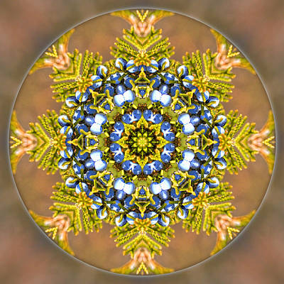 Photograph - Winter Solstice Mandala by Beth Sawickie
