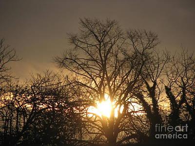 Photograph - Winter  Solstice Sun-burst. 1 by Joseph Doyle
