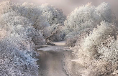 Frost Photograph - Winter Song by Sebestyen Bela