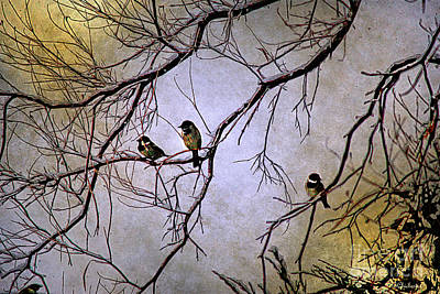 Las Cruces Painting - Winter Sparrow Dawn by Barbara Chichester
