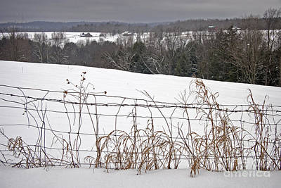 Fence Row Photograph - Winter Squall Panorama by John Stephens