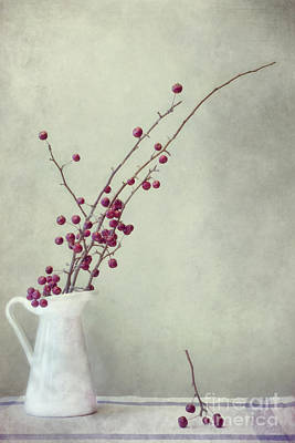 Red White Photograph - Winter Still Life by Priska Wettstein