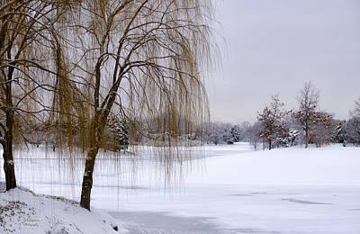 Photograph - Winter Stillness by Julie Palencia