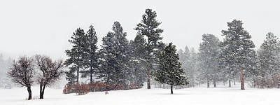 Photograph - Winter Storm Pan by Ken Smith