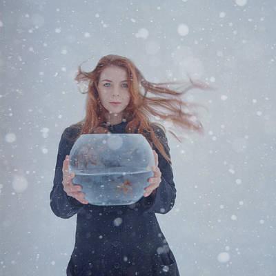 Golden Fish Photograph - Winter Story by Anka Zhuravleva