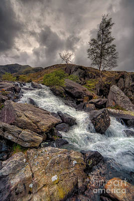 Hdr Landscape Photograph - Winter Stream by Adrian Evans