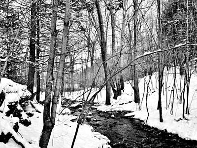Photograph - Winter Stream by CJ Rhilinger