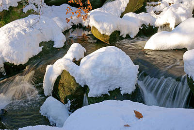 Photograph - Winter Stream by David Birchall
