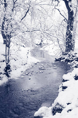 Art Print featuring the photograph Winter Stream by Liz Leyden