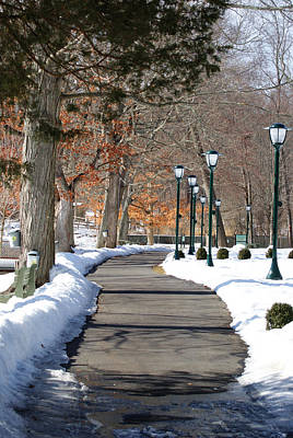 Photograph - Winter Stroll by Margie Avellino