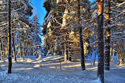 Digital Art - Winter Sun 1 by Jean-Louis