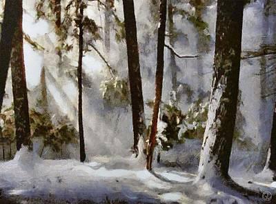 Snowscape Digital Art - Winter Sun by Gun Legler