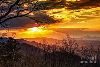 Winter Sun Art Print by Mark East