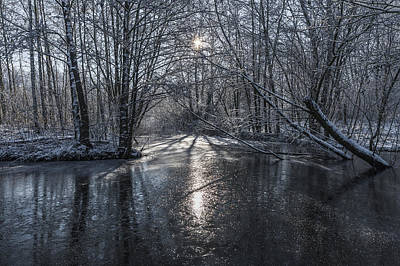 Winter Sun Rays Art Print by Svetlana Sewell