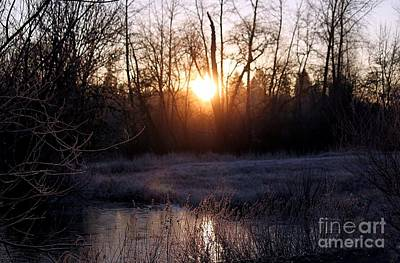 Photograph - Winter Sun Rising by Erica Hanel