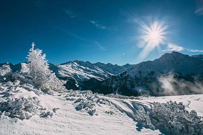 Photograph - Winter Sun by Soren Egeberg