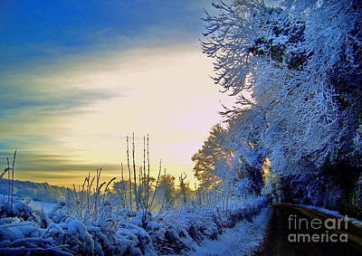 Photograph - Winter Sunburst by Nina Ficur Feenan