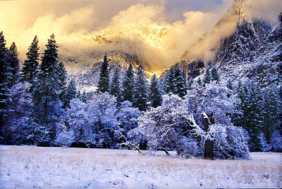 Photograph - Winter Sunries Yosemite Valley by Richard Delbridge