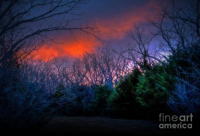 Photograph - Winter Sunrise 2012 by Fred Lassmann