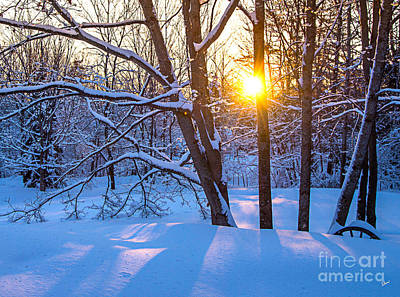 Photograph - Winter Sunrise by Alana Ranney