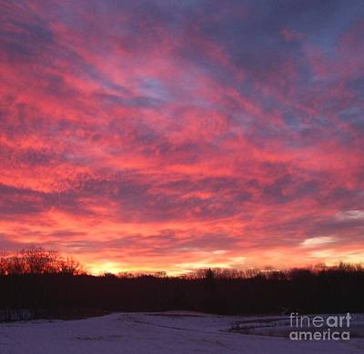 Photograph - Winter Sunrise by Amy Porter