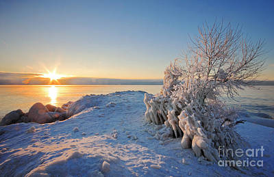 Photograph - Winter Sunrise by Charline Xia