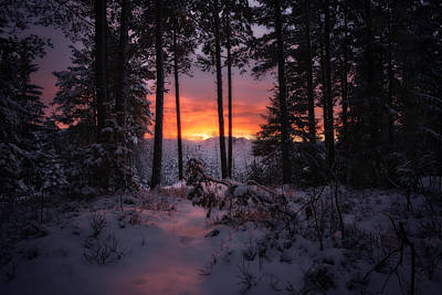 Winter Sunrise Art Print by Christian Hoiberg