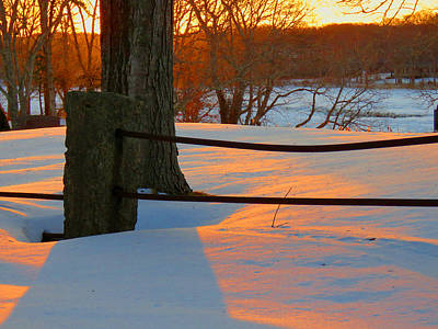 Winter Sunrise Glow Art Print by Dianne Cowen