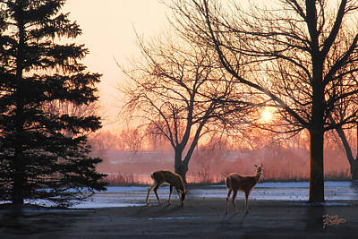 Painting - Winter Sunrise Greeting by Doug Kreuger