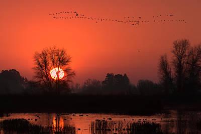 Wildlife Area Photograph - Winter Sunrise by Kathleen Bishop
