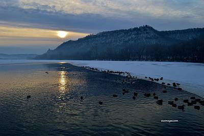 Photograph - Winter Sunrise by Susie Loechler