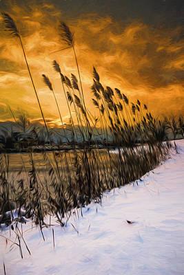 Winter Sunrise Through The Reeds - Artistic Art Print