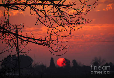 Winter Sunset 03 Art Print by Arik Baltinester