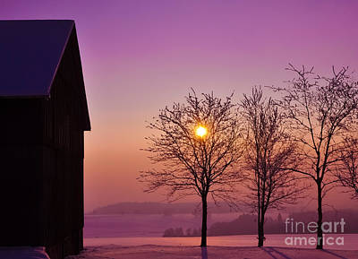 Royalty-Free and Rights-Managed Images - Winter Sunset by Aged Pixel