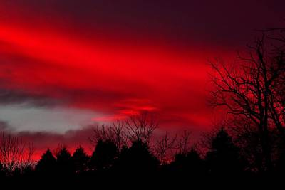 Photograph - Winter Sunset by Deena Stoddard