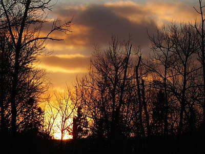 Photograph - Winter Sunset by Gene Cyr