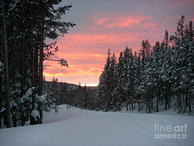 Photograph - Winter Sunset by Jeanette French