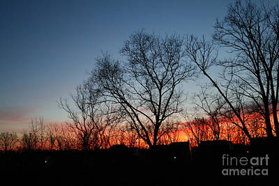 Photograph - Winter Sunset by Karen Adams