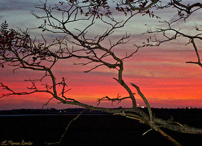 Winter Sunset Art Print by Lisa Merman Bender