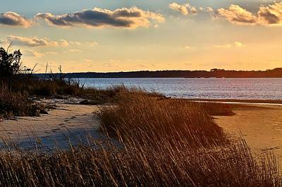 Pyrography - Winter Sunset On The Cape Fear River by Willard Killough III