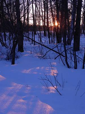 Photograph - Winter Sunset by Peggy  McDonald