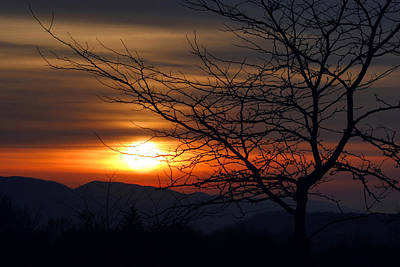 Photograph - Winter Sunset Silhouette by Gene Walls