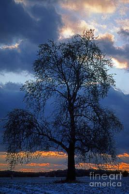 Pop Art - Winter Sunset by Skip Willits
