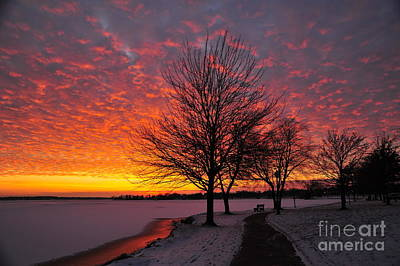 Art Print featuring the photograph Winter Sunset by Terri Gostola