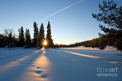 Photograph - Winter Sunset by Terry Elniski