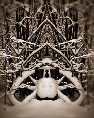 Photograph - Winter Temple by WB Johnston