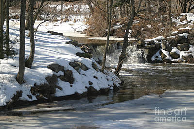 Photograph - Winter Thaw by Living Color Photography Lorraine Lynch
