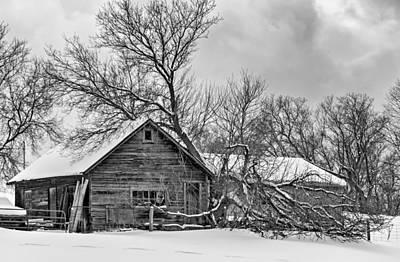 Canada Photograph - Winter Thoughts Monochrome by Steve Harrington